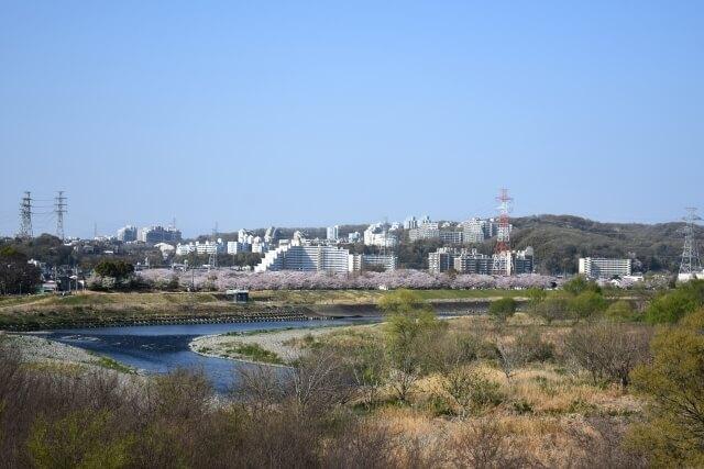 府中市の多摩川