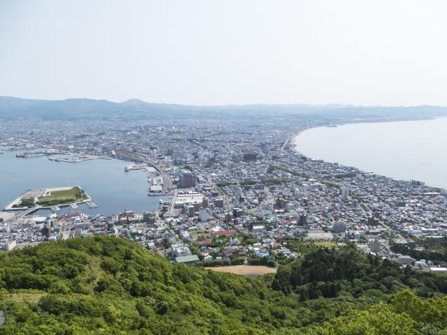 上空から見た函館市